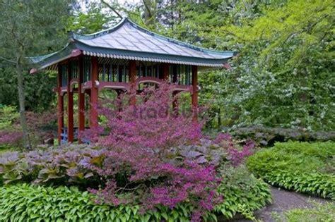 chinesischer pavillon chinesischer pavillon umgeben bl 252 henden rhododendren