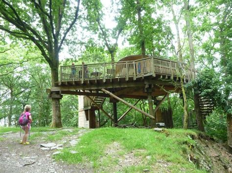 treehouse living living rooms treehouse homes decoration tips