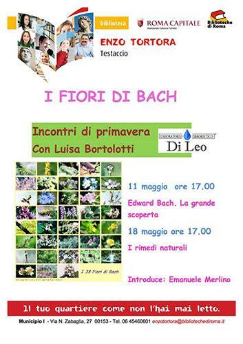 fiori di bach roma i fiori di bach storia significato applicazioni http