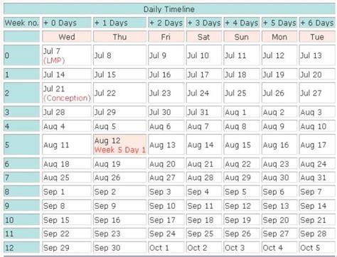 pregnancy timeline pregnancy timeline week by week calendar template 2016