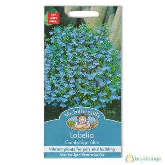 Benih Bunga Mr Fothergills Import Nigella In A Mist benih lobelia cambridge blue 2500 biji mr fothergills bibitbunga