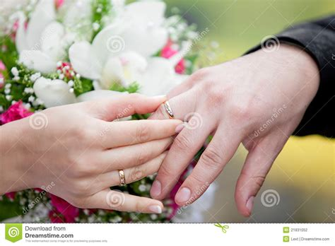 the groom and the exchange wedding rings stock photo