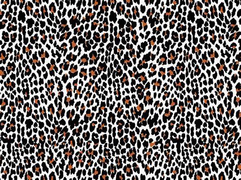 pattern animal vector animal pattern vector www pixshark com images