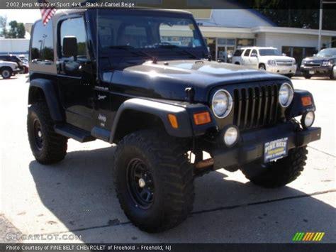 2002 Black Jeep Wrangler 2002 Jeep Wrangler Sport 4x4 In Black Photo No 36161390