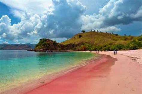 komodo adventure tours west flores island