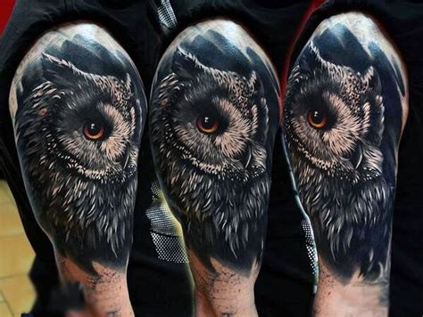 male upper arms realistic owl tattoo black and grey