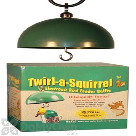 songbird essentials twirl a squirrel electronic bird