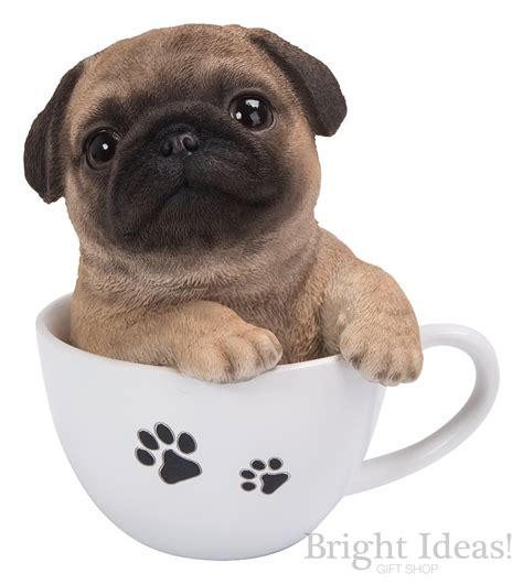 puppy in pug puppy in teacup pet pals by arts tp pugg f