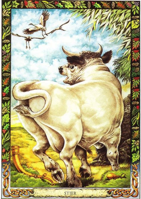 the druid animal oracle bull the druid animal oracle by stephanie and phillip carr meaning wealth potency and