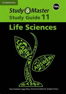 study amp master life sciences grade 11 study guide caps