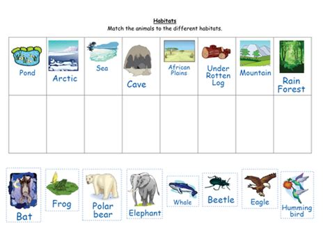 printable animal habitat matching game match the animals to their habitats by ruthbentham