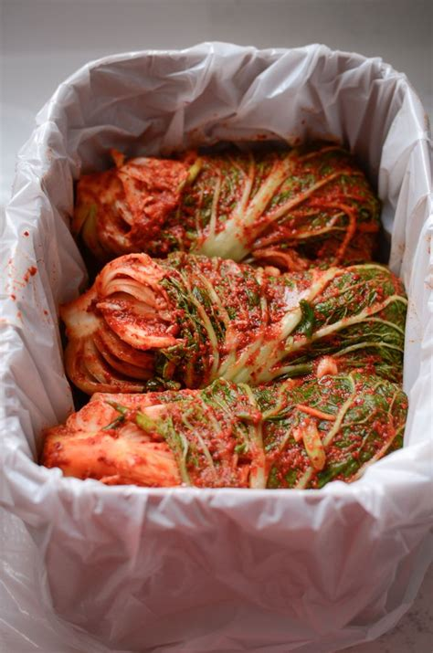Popular In Korea the most popular cabbage kimchi recipe in korea by a