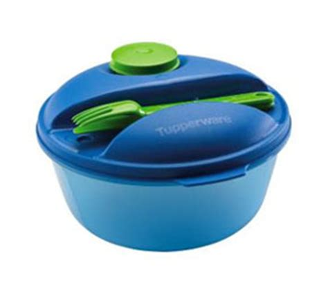 Salad Bowl Tupperware 302 found