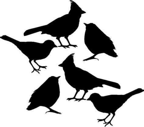 bird decals set of six vinyl wall decals stickers for diy