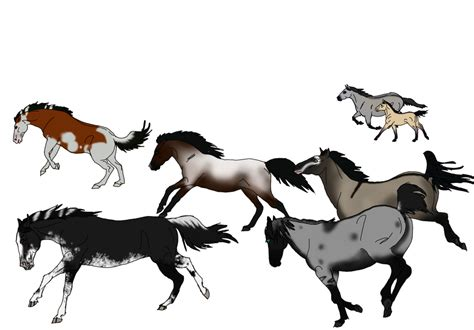 mustang horse drawing wild horse drawings clipart best