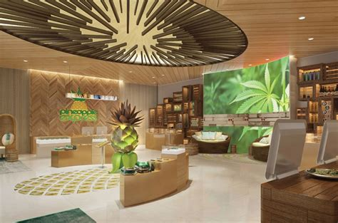 Interior Layout Tool design concept revealed for chain of cannabis retail stores