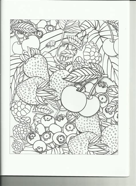 coloring books for adults reviews coloring book review fruit garden coloring book