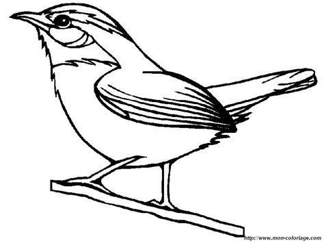 yellow bird coloring page colorear aves dibujo una alondra
