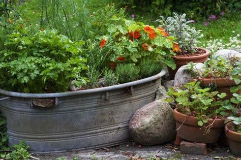 kräuter garten gartengestaltung ideen vorgarten mit krauter kruter im