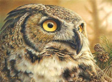 imagenes realistas de animales cuadros modernos pinturas y dibujos pintura al 211 leo de