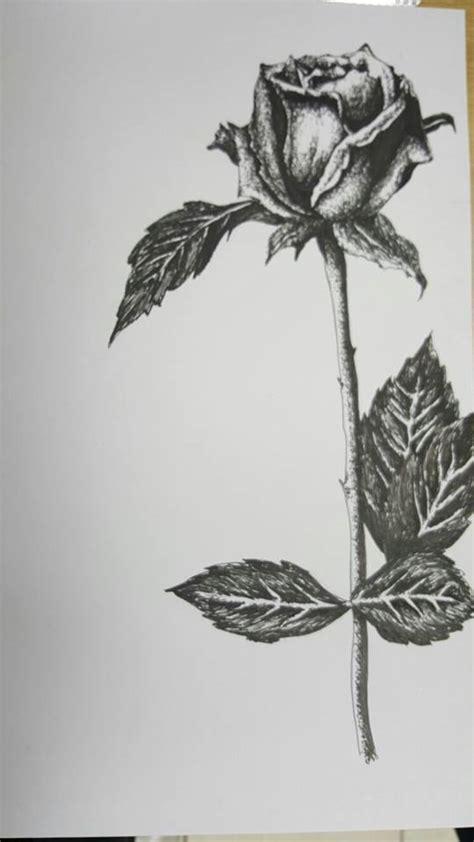 imagenes de flores sombreadas rosa i por danny dibujando
