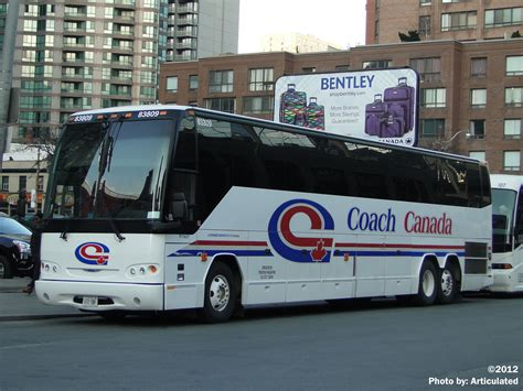 canada couch file coach canada 83809 a jpg cptdb wiki