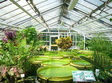 File Botanischer Garten Bs Seerosen Jpg Wikipedia Botanical Garden Openings