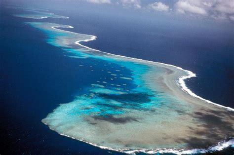 el arrecife de las 8494500759 el arrecife de coral m 225 s grande del mundo paperblog