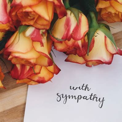 What to Send When Someone Passes Away?   Shutterfly