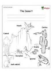 english worksheets habitat the desert