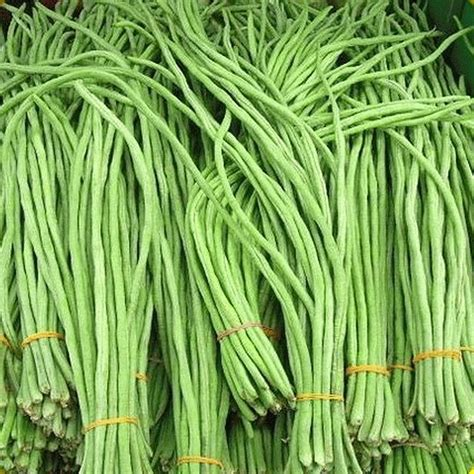 yard long bean white