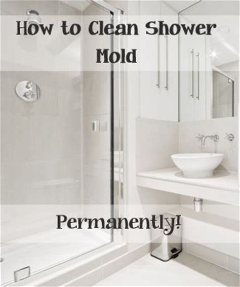 Cleaning Mildew From Shower by 25 Best Ideas About Cleaning Shower Mold On