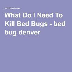 will bleach kill bed bugs 1000 ideas about killing bed bugs on pinterest bed bugs