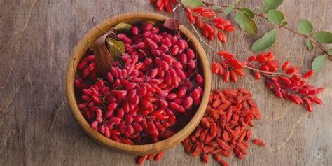 goji berry indonesia dapatkan kulit cantik bebas kerut dengan konsumsi 8 buah beri ini merdeka