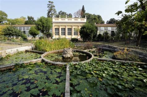 orto botanico di pavia home page gustapedia it