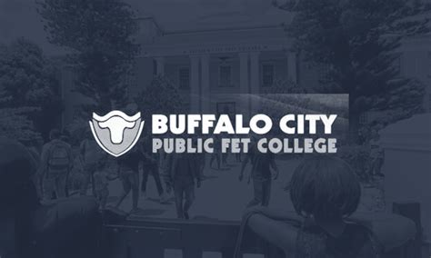 Of Buffalo Mba Cost by Buffalo City Tvet College Institutions