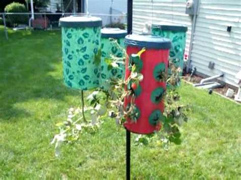 Pepper Planter by Topsy Turvy Tomatoes Peppers Strawberries