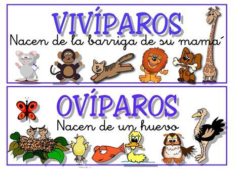 imagenes de animales oviparos viviparos y ovoviviparos 301 moved permanently