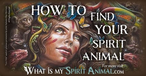 spirit animal spirit totem power animals
