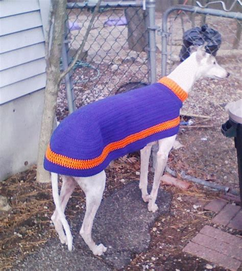 knitted greyhound sweater pattern greyhound sweater team colors jersey crochet by