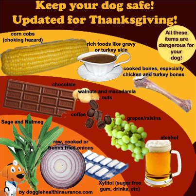 what foods can kill dogs 8 thanksgiving foods than can kill your madmikesamerica