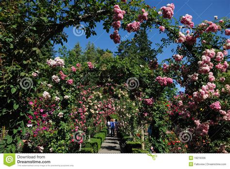 Garden Arch Vancouver Garden Arches And Path Royalty Free Stock Image