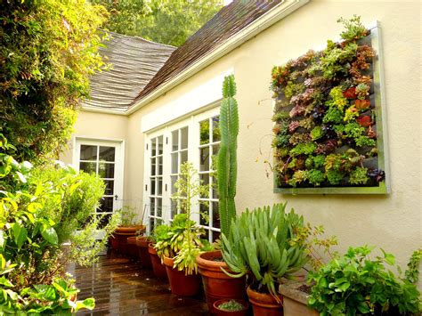 wall garden planter plants on walls vertical garden systems succulent installation gilman residence