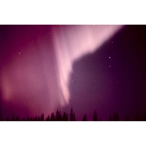 fast facts on the arctic northern lights aurora borealis