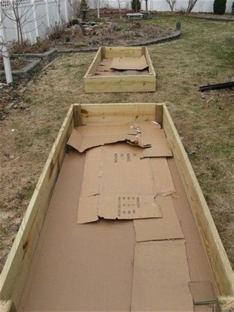 Preparing The Bottom Of A Raised Bed Garden Box Good How To Prepare A Vegetable Garden Bed