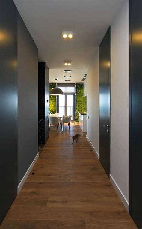 accent green walls   stylish apartment