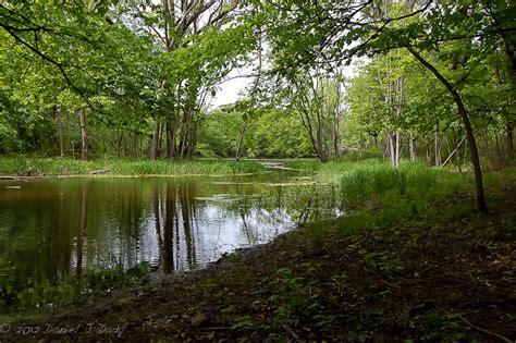 battle creek park dan s two picks dan s two picks