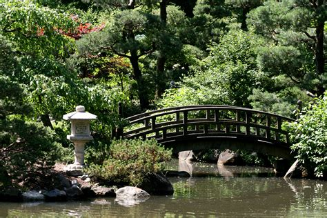 japanese garden bridges the anderson japanese gardens the nature of things