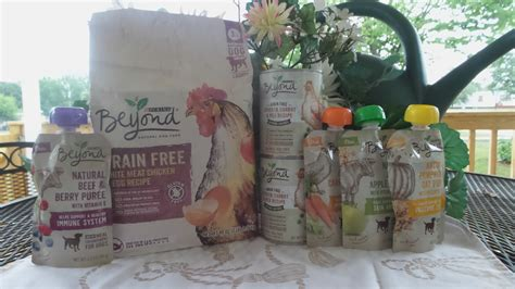 why do dogs always want food give your pets the best with purina 174 beyond 174 grain free
