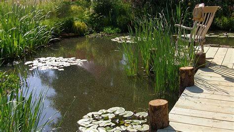 natural backyard pond formal and natural garden pond designs landscape garden